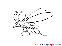 Dragonfly printable Coloring Sheets download