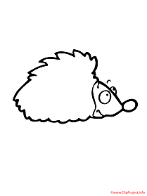 Hedgehog coloring sheet