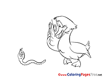 Pelican Colouring Sheet download free