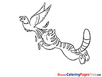 Parrot Cat Colouring Page printable free