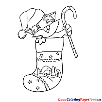Cat Christmas free Coloring Pages