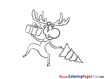 Deer free Colouring Page Christmas