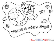 Cat free Colouring Page Have a nice Day