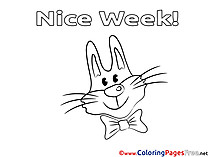 Rabbit Kids Nice Week Coloring Page