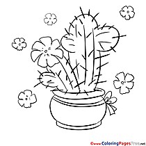 Cactus in the Pot for free Coloring Pages download