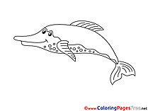 Dolphin Colouring Page printable free