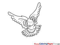 Dove free printable Coloring Sheets