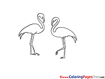 Flamingo Children Coloring Pages free