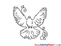 Pigeon Children download Colouring Page