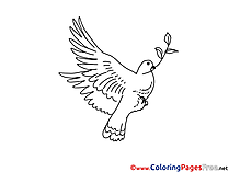 Pigeon with Olive download Colouring Sheet free