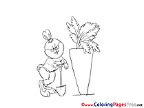 Carrot Bunny Coloring Sheets Easter free