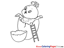 Ladder Chicken Colouring Page Easter free