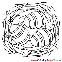Nest Coloring Pages Easter
