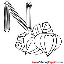 Nut printable Coloring Pages Alphabet