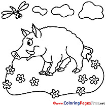 Boar for Kids printable Colouring Page