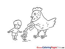 Boy Flower Chicken free Colouring Page download