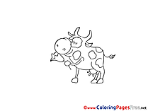 Bull Colouring Sheet download free