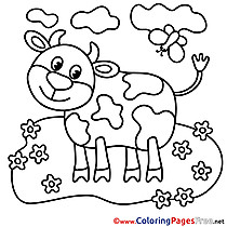 Calf Coloring Sheets download free