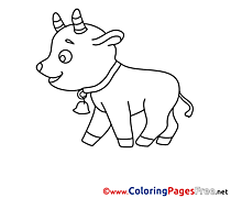 Calf Kids free Coloring Page