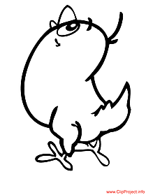 Chicken image to color