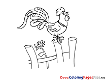 Cock for Kids printable Colouring Page