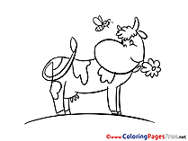 Cow free printable Coloring Sheets