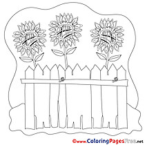 Flowers Coloring Pages for free
