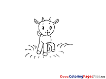 Goatling for Children free Coloring Pages