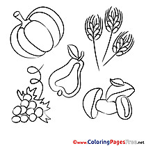 Harvest Coloring Sheets download free