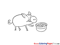 Pig Coloring Sheets download free