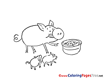 Pigs eating download Coloring Pages