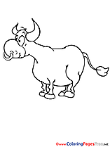 Printable Coloring Pages Bull for free
