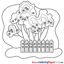 Trees printable Coloring Pages for free