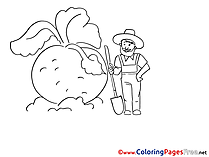 Turnip download Colouring Sheet free