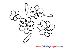 Beautiful Flowers Colouring Sheet download free