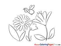 Bee Coloring Pages for free