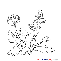 Butterfly printable Coloring Sheets download