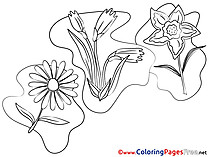 Chamomile Children download Colouring Page