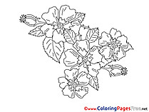 Children Flowers Coloring Pages free