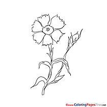 Drawing Colouring Sheet download free