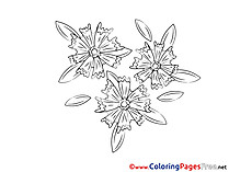Drawing for free Coloring Pages download