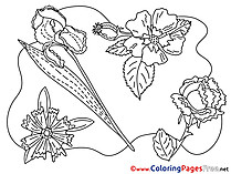 Flowering download Colouring Sheet free
