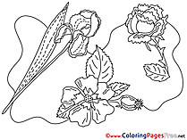 Flowering free printable Coloring Sheets