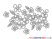 Flowers for Kids printable Colouring Page