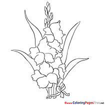 Iris for Children free Coloring Pages