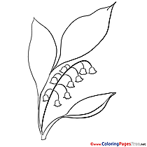 Leaves Flower download Colouring Sheet free