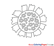 Litmus Colouring Sheet download free