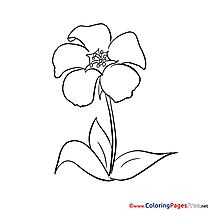 Picture free printable Coloring Sheets
