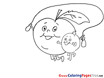 Colouring Page Apples printable free