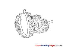 Kids free Coloring Page Fruit